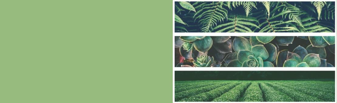Bohemeria propose des tissus naturels en lin et en chanvre pour un intérieur écologique